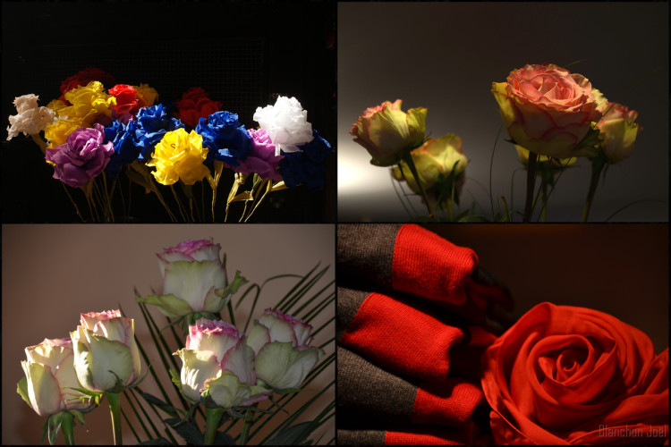 MONTAGE ROSES